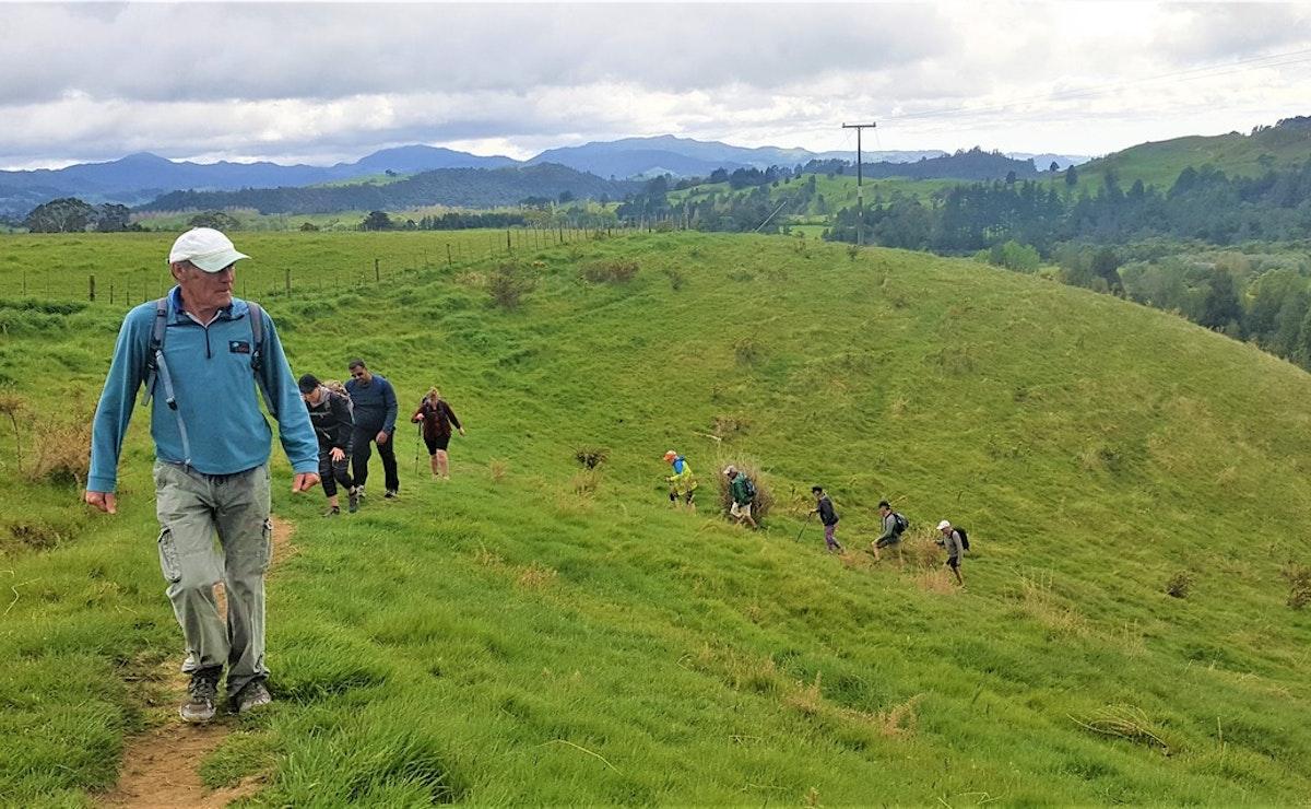Kauri Walk to Dickey Flat