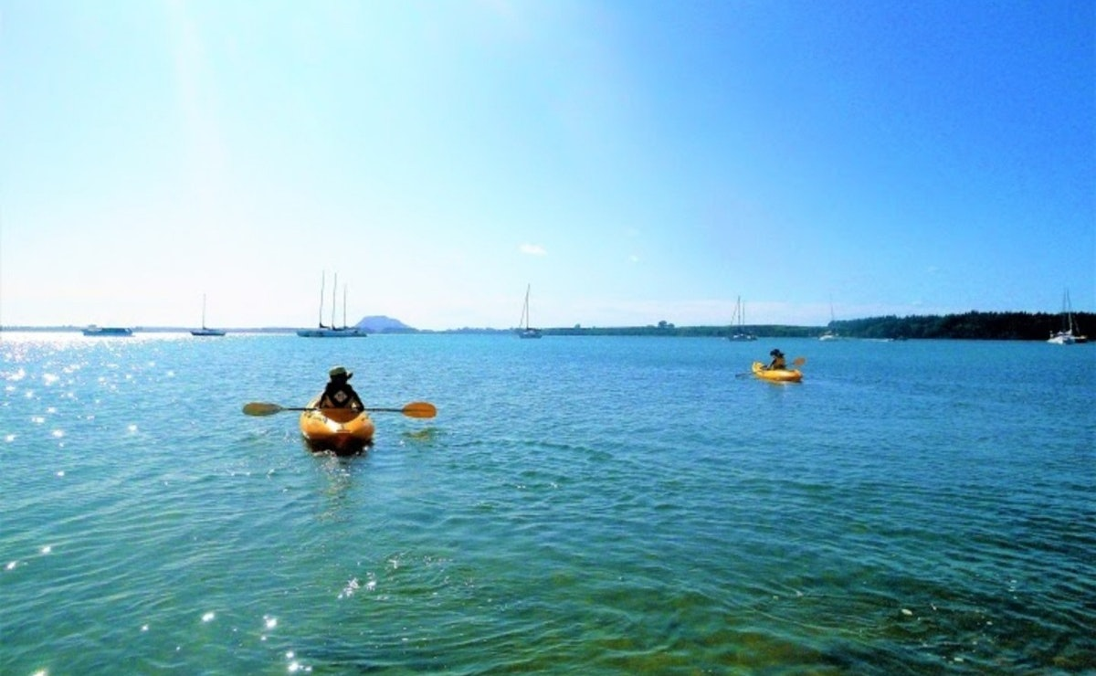 Waterways Adventure Omokoroa Kayaks - Morning